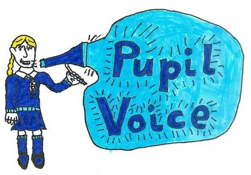 pupil voice logo